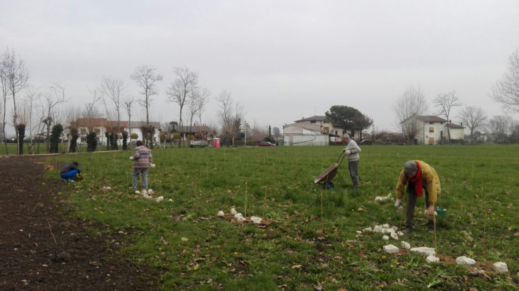 NEWS_1_VOLONTATI_02